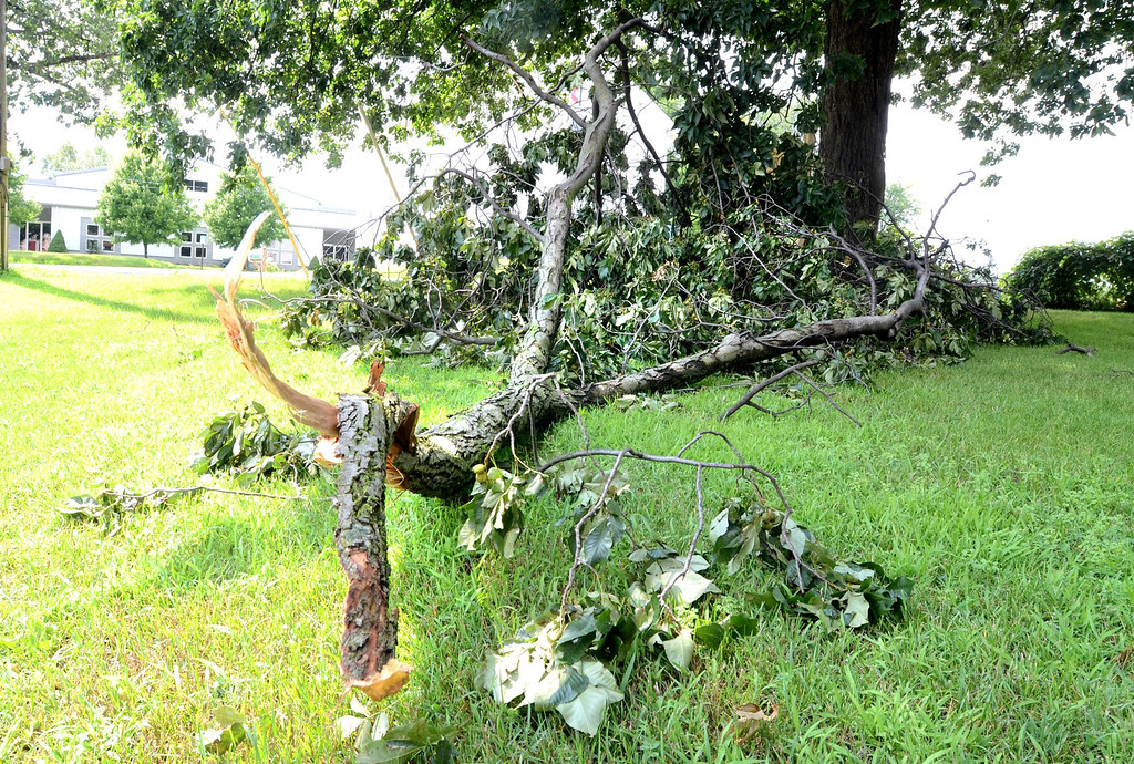 Description of . A large tree branch down in front of the Brandon Fire Station on Sashabaw Road near Seymour Lake Road in Brandon Township.    Tuesday, July 23, 2013.  The Oakland Press/TIM THOMPSON