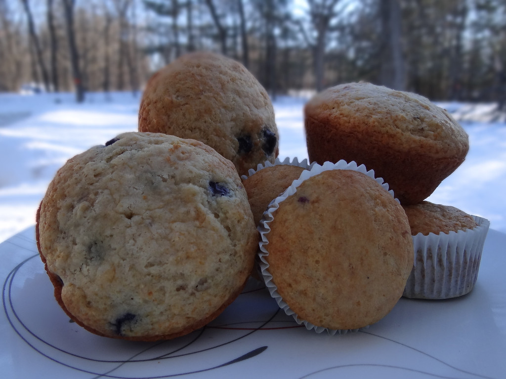 Description of . Or any season throughout the year - treat yourself and your kids to a wholesome Florida Orange Juice Blueberry-Orange Muffin.
