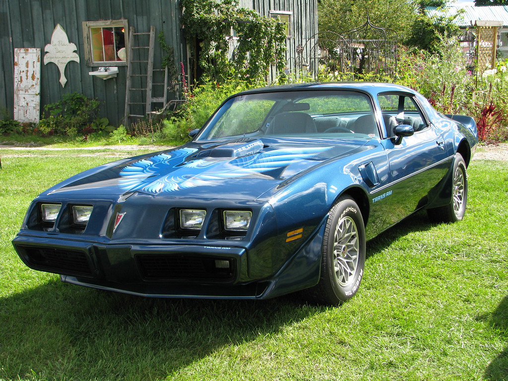 . 1979 Pontiac Trans Am, less than 25,000 miles, all factory original, original owner (Larry and Sue Lempicki) These are our Woodward Cruisers ! Larry and Sue Lempicki Clarkston